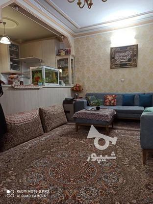 52 متر تکواحدی / سرمایهگذاری در گروه خرید و فروش املاک در تهران در شیپور-عکس2