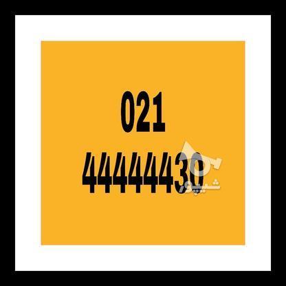خط تلفن ثابت رند021.44444430 در گروه خرید و فروش موبایل، تبلت و لوازم در تهران در شیپور-عکس1