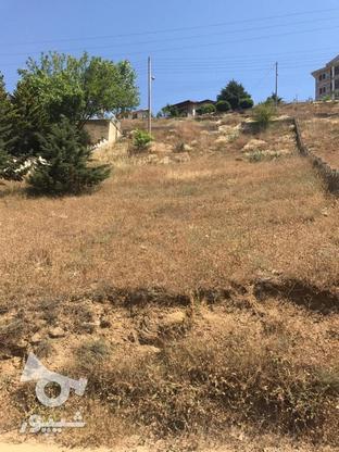 440 متر زمین شهرکی در بام کلاردشت در گروه خرید و فروش املاک در مازندران در شیپور-عکس5