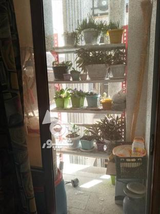 فروش آپارتمان شیک درقلب شهر محمودآباد بدون واسطه شخصی در گروه خرید و فروش املاک در مازندران در شیپور-عکس8
