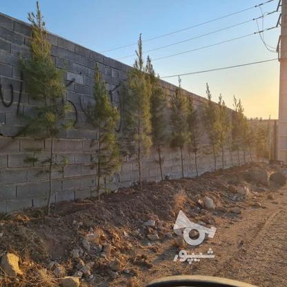 فروش زمین 400 متر در دماوندسیدآباد  در گروه خرید و فروش املاک در تهران در شیپور-عکس9
