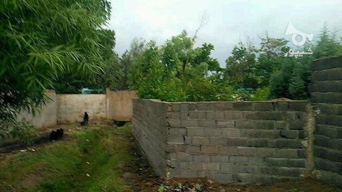 باغچه 600متری 4دیواری بافت مسکونی پیشوا سرسبز در گروه خرید و فروش املاک در تهران در شیپور-عکس6
