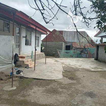 فروش ویلا 715 متر در رضوانشهر در گروه خرید و فروش املاک در گیلان در شیپور-عکس2