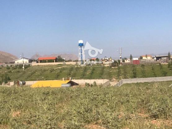 فروش زمین ویلایی300 متر در سیدآباد در گروه خرید و فروش املاک در تهران در شیپور-عکس5