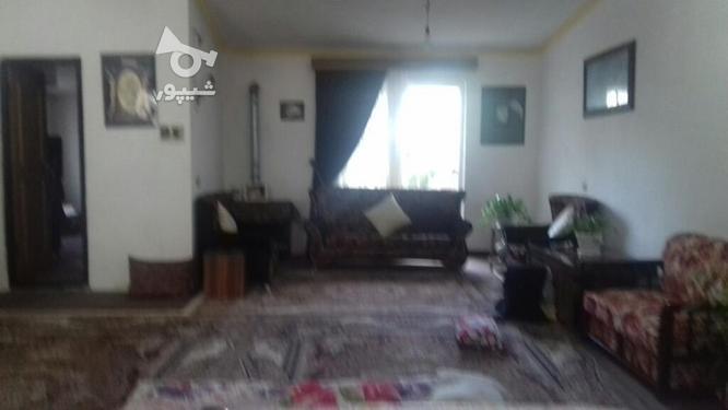 فروش خانه همکف در گروه خرید و فروش املاک در مازندران در شیپور-عکس1