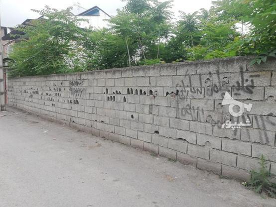 فروش زمین در امیر 22 بقیمت در گروه خرید و فروش املاک در مازندران در شیپور-عکس1