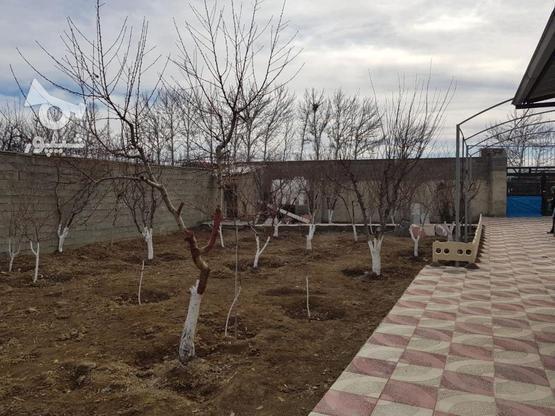 550 متر باغچه واقع در خیابان سپیدار-لشگرآباد در گروه خرید و فروش املاک در البرز در شیپور-عکس2