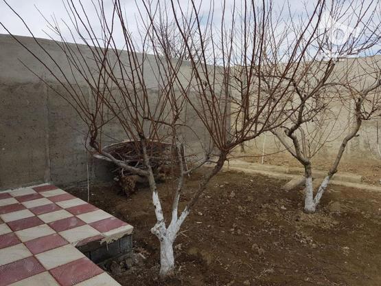 550 متر باغچه واقع در خیابان سپیدار-لشگرآباد در گروه خرید و فروش املاک در البرز در شیپور-عکس8
