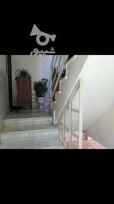 فروش آپارتمان 46 متر در سی متری جی در گروه خرید و فروش املاک در تهران در شیپور-عکس2