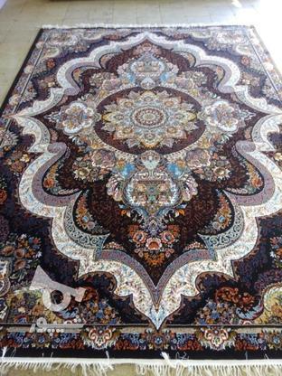 فرش دربار کاشان، شهیاد 6متری، طرح 700 شانه، ماشینی در گروه خرید و فروش لوازم خانگی در ایلام در شیپور-عکس2