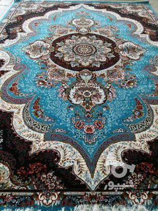 فرش دربار کاشان، شهیاد 6متری، طرح 700 شانه، ماشینی در گروه خرید و فروش لوازم خانگی در ایلام در شیپور-عکس5