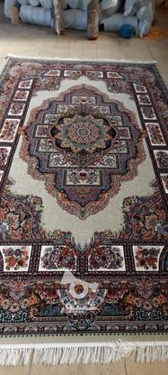 فرش دربار کاشان، حوض نقره 12متری، طرح 700 شانه، ماشینی در گروه خرید و فروش لوازم خانگی در آذربایجان غربی در شیپور-عکس1