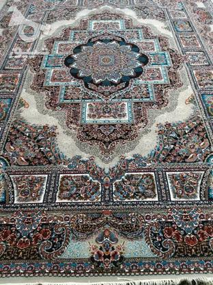 فرش دربار کاشان، حوض نقره 12متری، طرح 700 شانه، ماشینی در گروه خرید و فروش لوازم خانگی در آذربایجان غربی در شیپور-عکس5