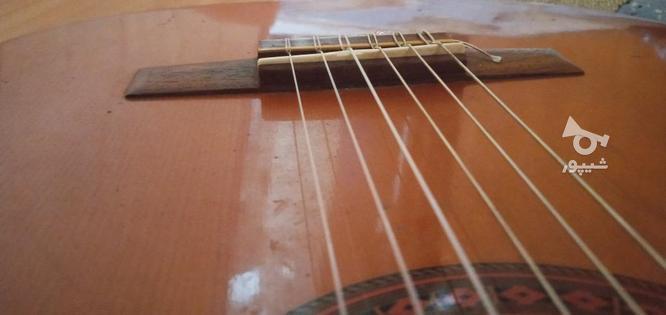 گیتار C_40 در گروه خرید و فروش ورزش فرهنگ فراغت در گیلان در شیپور-عکس4