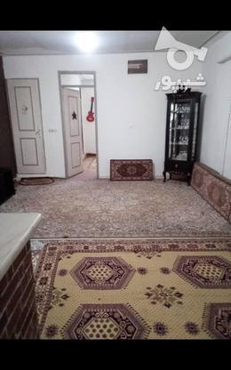 فروش آپارتمان 48 متر در سی متری جی در گروه خرید و فروش املاک در تهران در شیپور-عکس1