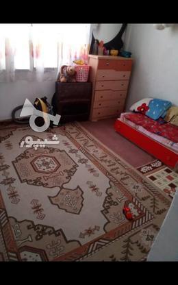فروش آپارتمان 48 متر در سی متری جی در گروه خرید و فروش املاک در تهران در شیپور-عکس3