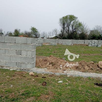 فروش زمین مسکونی 314 متر در رضوانشهر در گروه خرید و فروش املاک در گیلان در شیپور-عکس1
