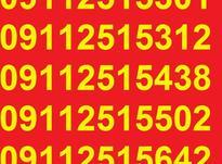 0911.251.56.42 در شیپور-عکس کوچک