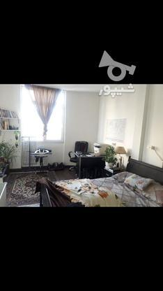 فروش آپارتمان 35 متر در سی متری جی در گروه خرید و فروش املاک در تهران در شیپور-عکس2