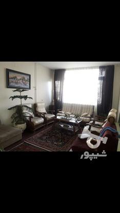 فروش آپارتمان 35 متر در سی متری جی در گروه خرید و فروش املاک در تهران در شیپور-عکس6