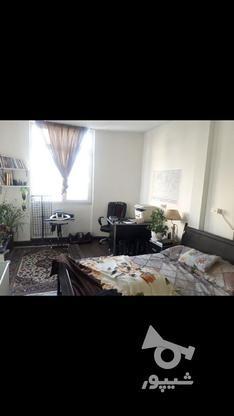 فروش آپارتمان 35 متر در سی متری جی در گروه خرید و فروش املاک در تهران در شیپور-عکس7