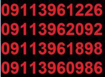 0911.396.11.76 در شیپور-عکس کوچک
