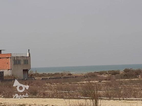 فروش زمین ساحلی شهرک جهاد در گروه خرید و فروش املاک در مازندران در شیپور-عکس1
