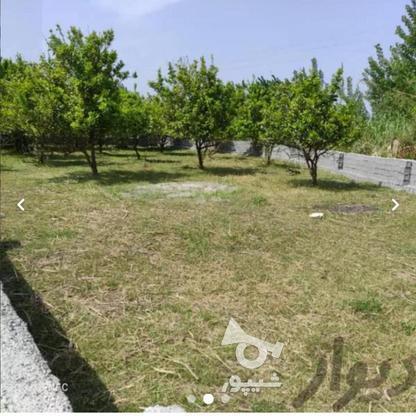 فروش زمین مسکونی 200 متر در فریدونکنار در گروه خرید و فروش املاک در مازندران در شیپور-عکس6