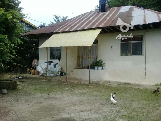 خانه کلنگی در لاهبجان با سند تک برگ در گروه خرید و فروش املاک در گیلان در شیپور-عکس1