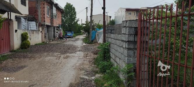 زمین برای سرمایه گذاری در گروه خرید و فروش املاک در مازندران در شیپور-عکس6