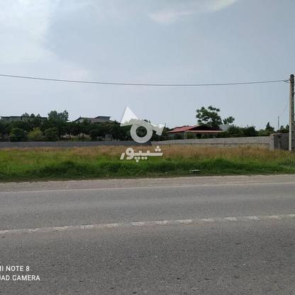 فروش زمین مسکونی 1800 متر در سرخرود در گروه خرید و فروش املاک در مازندران در شیپور-عکس2