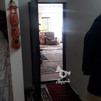 فروش ویلا 254 متر در آمل در گروه خرید و فروش املاک در مازندران در شیپور-عکس9