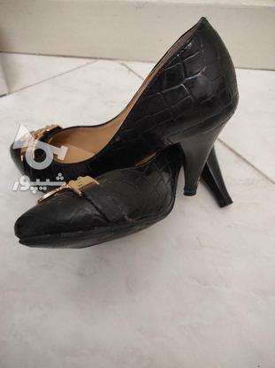 کفش پاشنه دار زنانه در گروه خرید و فروش لوازم شخصی در اصفهان در شیپور-عکس2