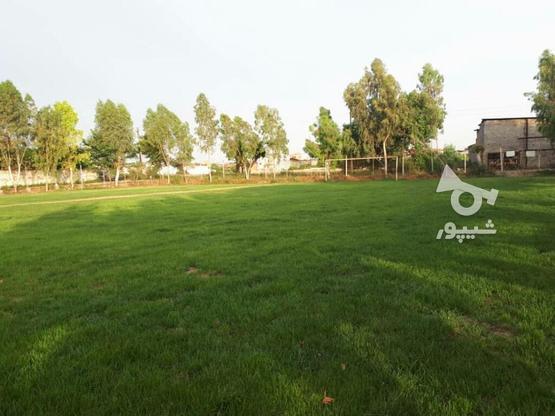 خریدار زمین به متراژ 150 تا 200 متر در گروه خرید و فروش املاک در مازندران در شیپور-عکس1