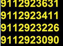 0911.292.30.84 در شیپور-عکس کوچک