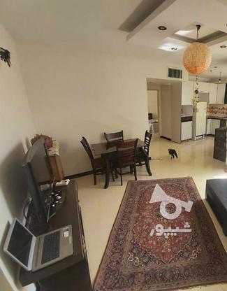 62 متر نوساز ** در دل طبیعت ** کوهسار غربی در گروه خرید و فروش املاک در تهران در شیپور-عکس4
