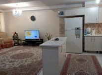 54متر دامپزشکی جیحون فل بازسازی در شیپور-عکس کوچک