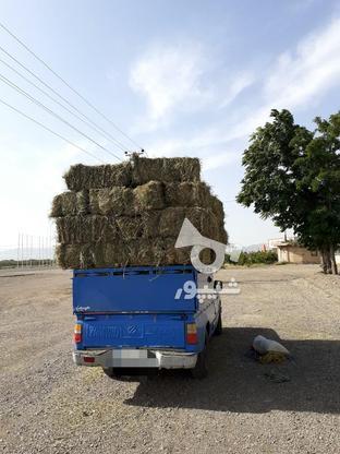 کاه ویونجه در گروه خرید و فروش خدمات و کسب و کار در البرز در شیپور-عکس1