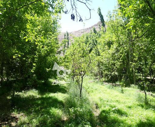 باغ روستای آستانه زیر قیمت فوری در گروه خرید و فروش املاک در سمنان در شیپور-عکس1