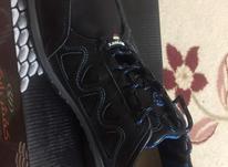 کفش ورزشی سایز 43 در شیپور-عکس کوچک