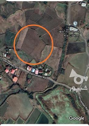 قطعه زمینی جهت ساخت در گروه خرید و فروش املاک در گیلان در شیپور-عکس1