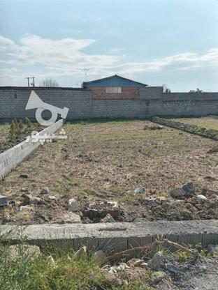 فروش زمین مسکونی 200 متر در فریدونکنار در گروه خرید و فروش املاک در مازندران در شیپور-عکس5