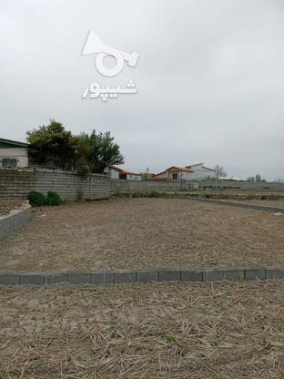 فروش زمین مسکونی 200 متر در فریدونکنار در گروه خرید و فروش املاک در مازندران در شیپور-عکس2