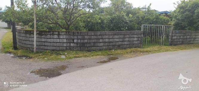 320 متر زمین واقع در شمس آباد نشتارود در گروه خرید و فروش املاک در مازندران در شیپور-عکس2