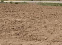1000متر زمین ویلایی واقع در روستای عرب جاده قدیم بدرانلو در شیپور-عکس کوچک
