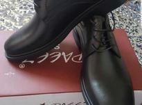 کفش تمام چرم در شیپور-عکس کوچک