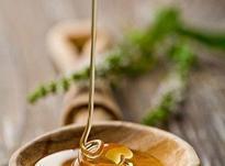 عسل صددرصد طبیعی در شیپور-عکس کوچک