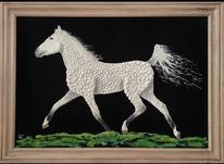 تابلوی نقاشی اسب صدف مخمل زیبا تابلو عکس در شیپور-عکس کوچک