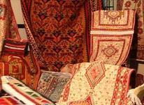 خرید و فروش انواع فرش کهنه و نو در شیپور-عکس کوچک