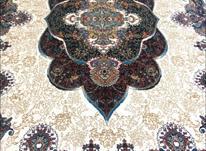 فرش دربار کاشان، کرم 6متری، ارزان قیمت، ماشینی در شیپور-عکس کوچک